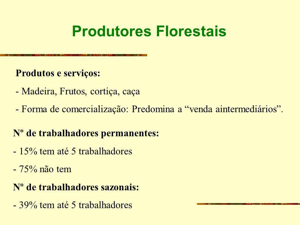 Produtos e serviços: - Madeira, Frutos, cortiça, caça - Forma de comercialização: Predomina a venda aintermediários. Nº de trabalhadores permanentes: