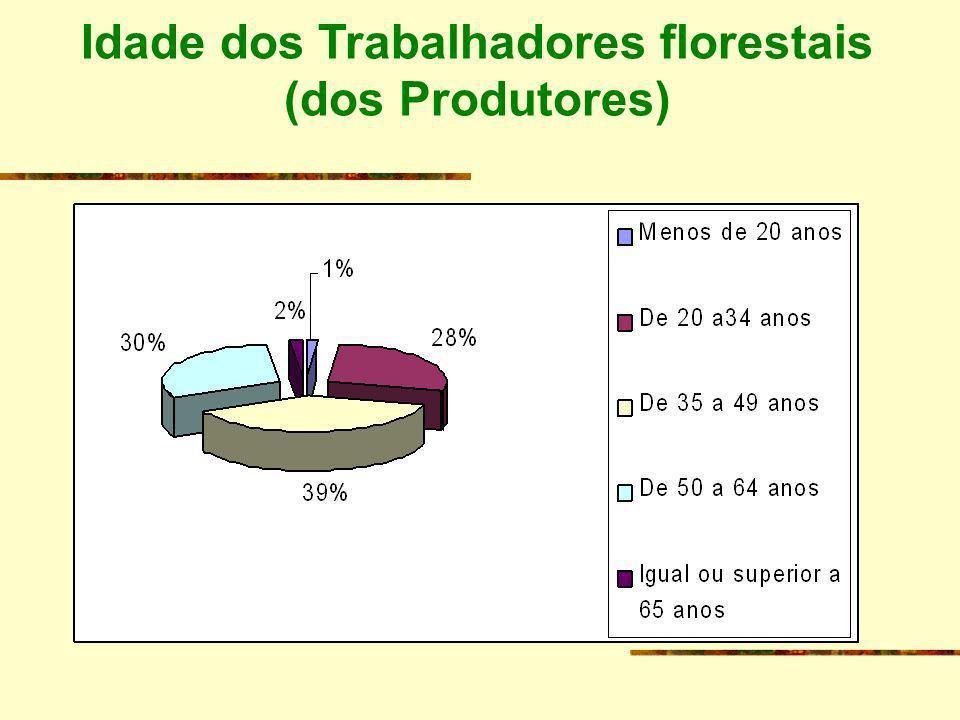 ORGANIZAÇÃO DA FORMAÇÃO - Formação modular e flexível - Horários laboral (produtores) ou pós-laboral (Prestadores de serviços) - Acções de curta a média duração; Acções de sensibilização; Visitas de estudo, - Apenas alguns dias por semana
