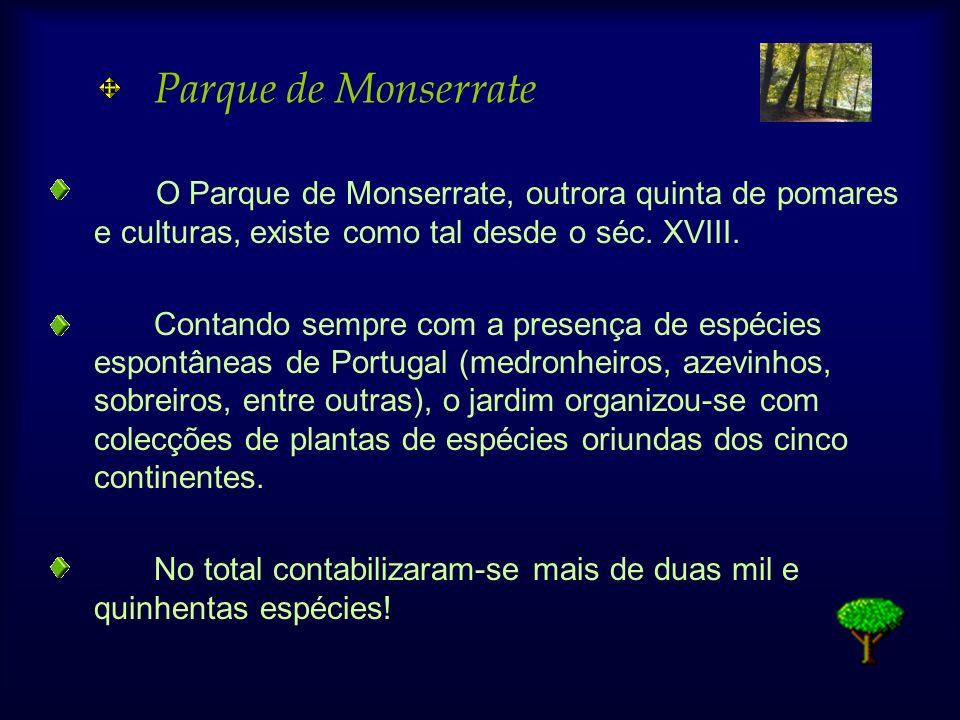 Parque de Monserrate O Parque de Monserrate, outrora quinta de pomares e culturas, existe como tal desde o séc. XVIII. Contando sempre com a presença