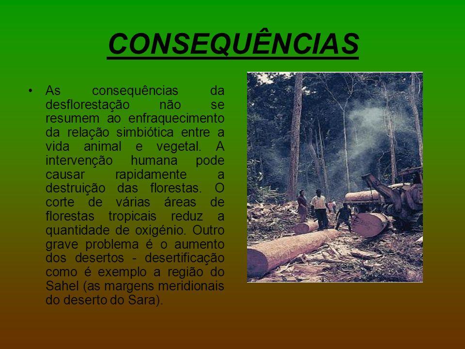 CONSEQUÊNCIAS As consequências da desflorestação não se resumem ao enfraquecimento da relação simbiótica entre a vida animal e vegetal.