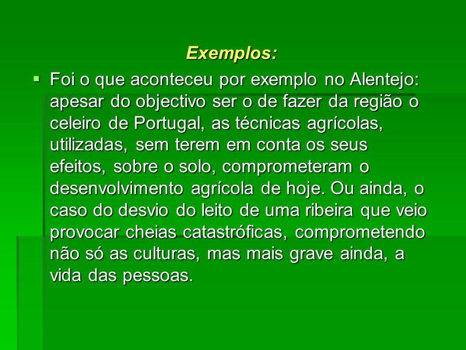 Exemplos: Foi o que aconteceu por exemplo no Alentejo: apesar do objectivo ser o de fazer da região o celeiro de Portugal, as técnicas agrícolas, util