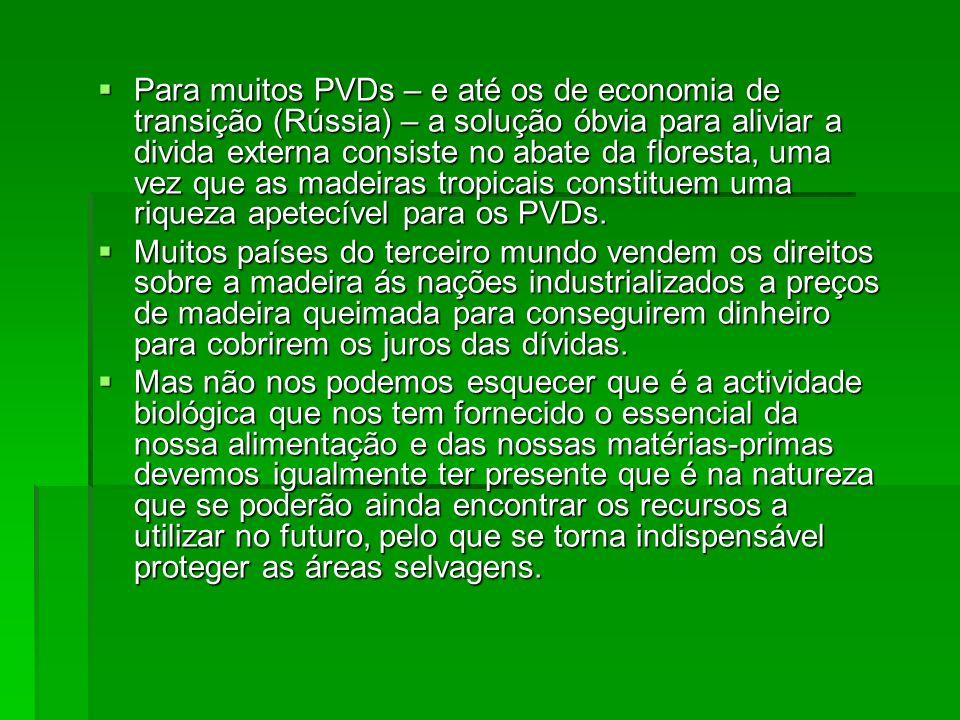 Para muitos PVDs – e até os de economia de transição (Rússia) – a solução óbvia para aliviar a divida externa consiste no abate da floresta, uma vez q