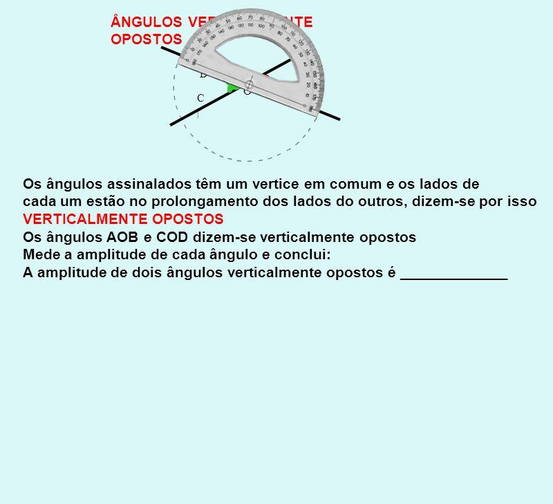 ÂNGULOS COMLEMENTARES ÂNGULOS SUPLEMENTARES Os dois ângulos assinalados juntos formam um ângulo recto.