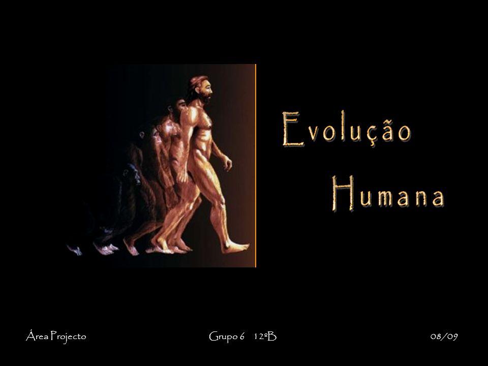 É importante referir que ainda não há actualmente um consenso entre a comunidade cientifica relativamente às origens e à evolução da espécie humana.