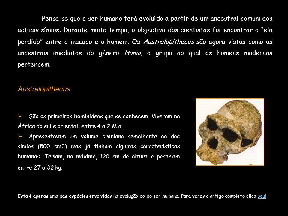 Pensa-se que o ser humano terá evoluído a partir de um ancestral comum aos actuais símios. Durante muito tempo, o objectivo dos cientistas foi encontr
