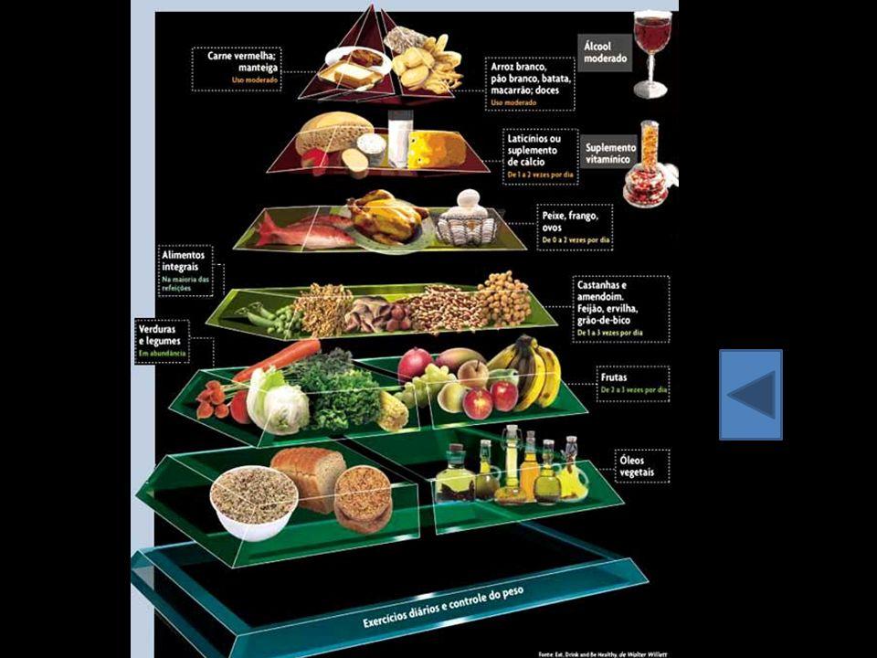Alimentação saudável é uma dieta composta de proteínas, hidrocarbonetos, gorduras, fibras, cálcio e outros minerais, como também rica em vitaminas.