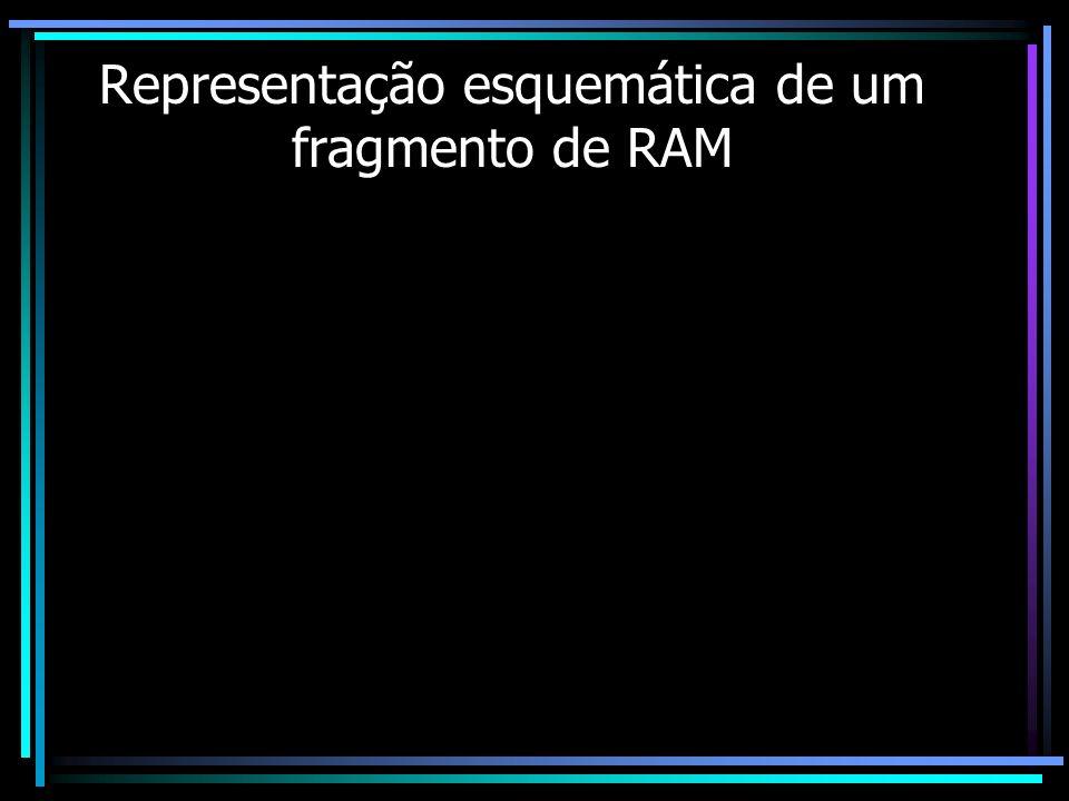 Representação esquemática de um fragmento de RAM