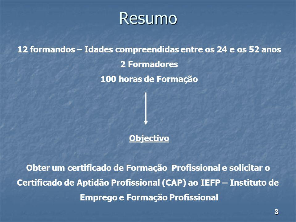 Resumo 12 formandos – Idades compreendidas entre os 24 e os 52 anos 2 Formadores 100 horas de Formação Objectivo Obter um certificado de Formação Prof