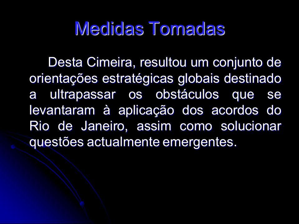 Medidas Tomadas Desta Cimeira, resultou um conjunto de orientações estratégicas globais destinado a ultrapassar os obstáculos que se levantaram à aplicação dos acordos do Rio de Janeiro, assim como solucionar questões actualmente emergentes.