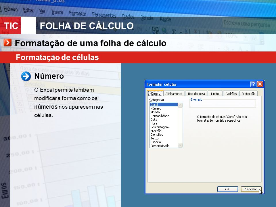 TIC 10FOLHA DE CÁLCULO Formatação de uma folha de cálculo Formatação de células Protecção de uma folha de cálculo Para impedir a modificação dos dados de uma folha de cálculo, o Excel disponibiliza várias opções de protecção.