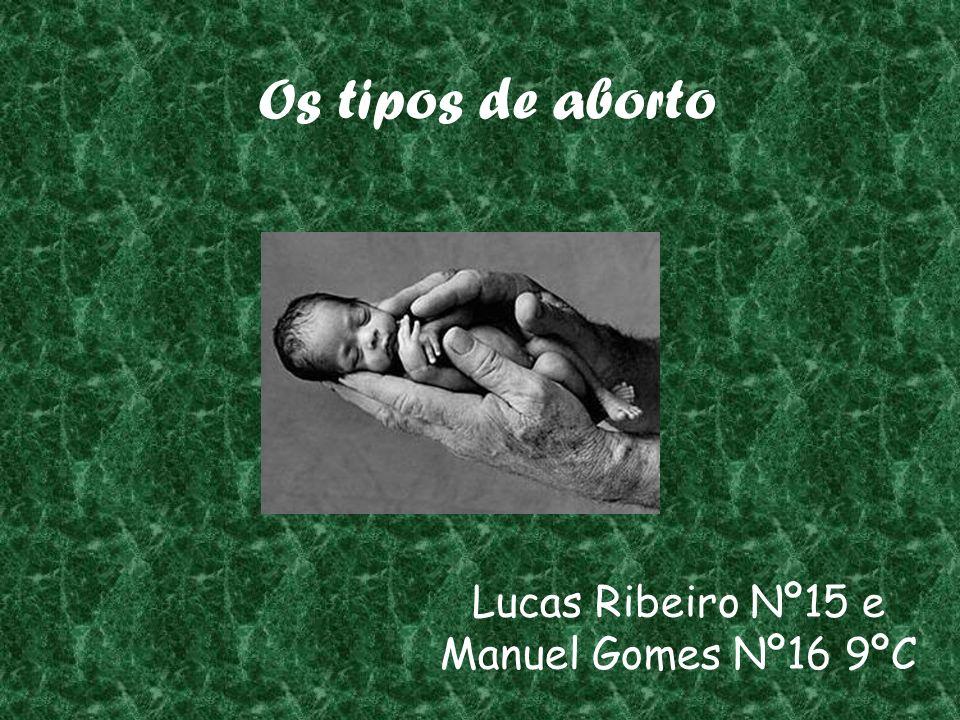 Os tipos de aborto Lucas Ribeiro Nº15 e Manuel Gomes Nº16 9ºC