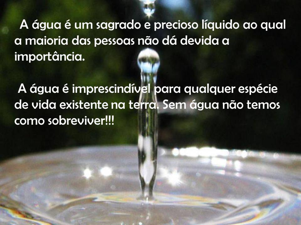 A água é um sagrado e precioso líquido ao qual a maioria das pessoas não dá devida a importância. A água é imprescindível para qualquer espécie de vid