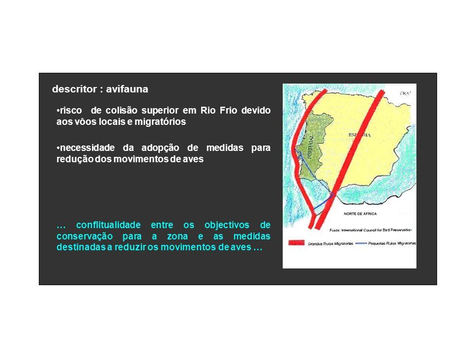 descritor : avifauna risco de colisão superior em Rio Frio devido aos vôos locais e migratórios necessidade da adopção de medidas para redução dos mov