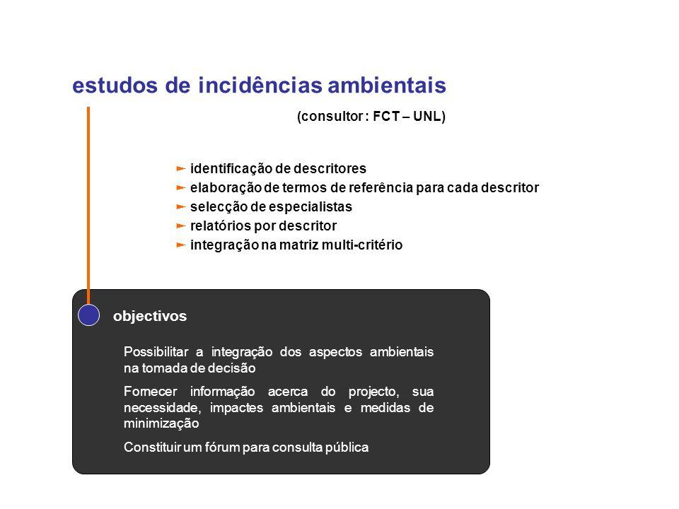 estudos de incidências ambientais identificação de descritores elaboração de termos de referência para cada descritor selecção de especialistas relató