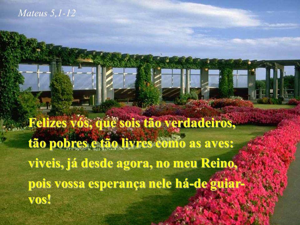Felizes vós, que sois tão verdadeiros, tão pobres e tão livres como as aves: viveis, já desde agora, no meu Reino, pois vossa esperança nele há-de guiar- vos.