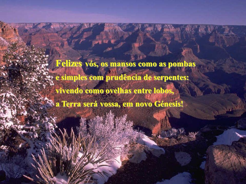 Felizes vós, os mansos como as pombas e simples com prudência de serpentes: vivendo como ovelhas entre lobos, a Terra será vossa, em novo Génesis!