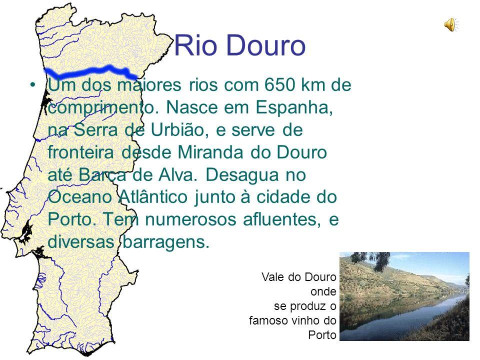 Rio Douro Um dos maiores rios com 650 km de comprimento. Nasce em Espanha, na Serra de Urbião, e serve de fronteira desde Miranda do Douro até Barca d