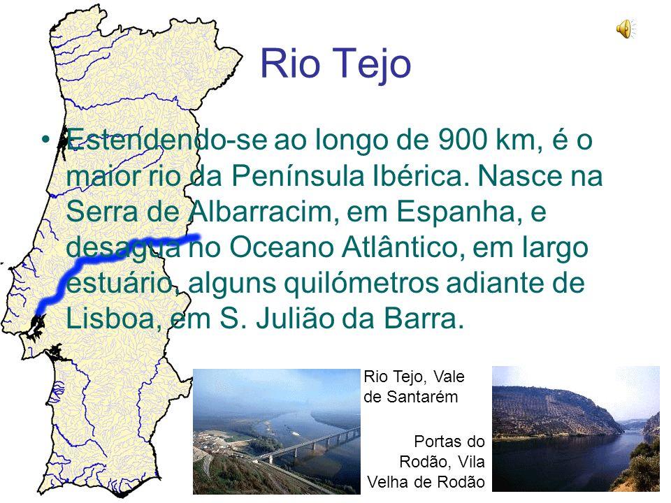 Rio Tejo Estendendo-se ao longo de 900 km, é o maior rio da Península Ibérica. Nasce na Serra de Albarracim, em Espanha, e desagua no Oceano Atlântico