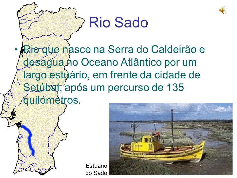 Rio Sado Rio que nasce na Serra do Caldeirão e desagua no Oceano Atlântico por um largo estuário, em frente da cidade de Setúbal, após um percurso de