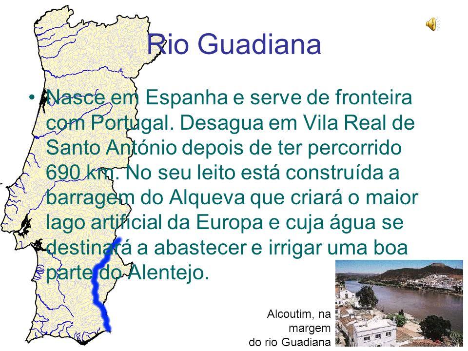 Rio Guadiana Nasce em Espanha e serve de fronteira com Portugal. Desagua em Vila Real de Santo António depois de ter percorrido 690 km. No seu leito e
