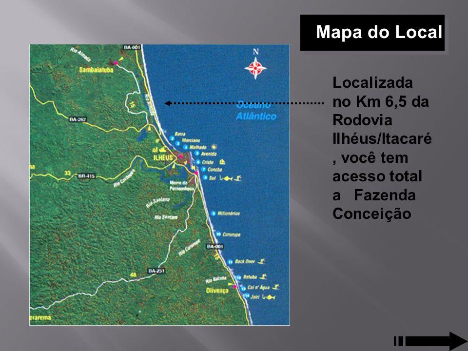 Mapa do Local Localizada no Km 6,5 da Rodovia Ilhéus/Itacaré, você tem acesso total a Fazenda Conceição