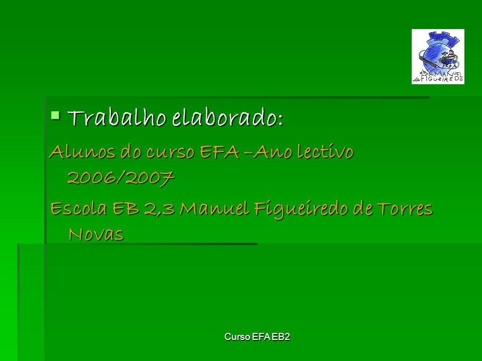 Curso EFA EB2 Trabalho elaborado: Trabalho elaborado: Alunos do curso EFA –Ano lectivo 2006/2007 Escola EB 2,3 Manuel Figueiredo de Torres Novas