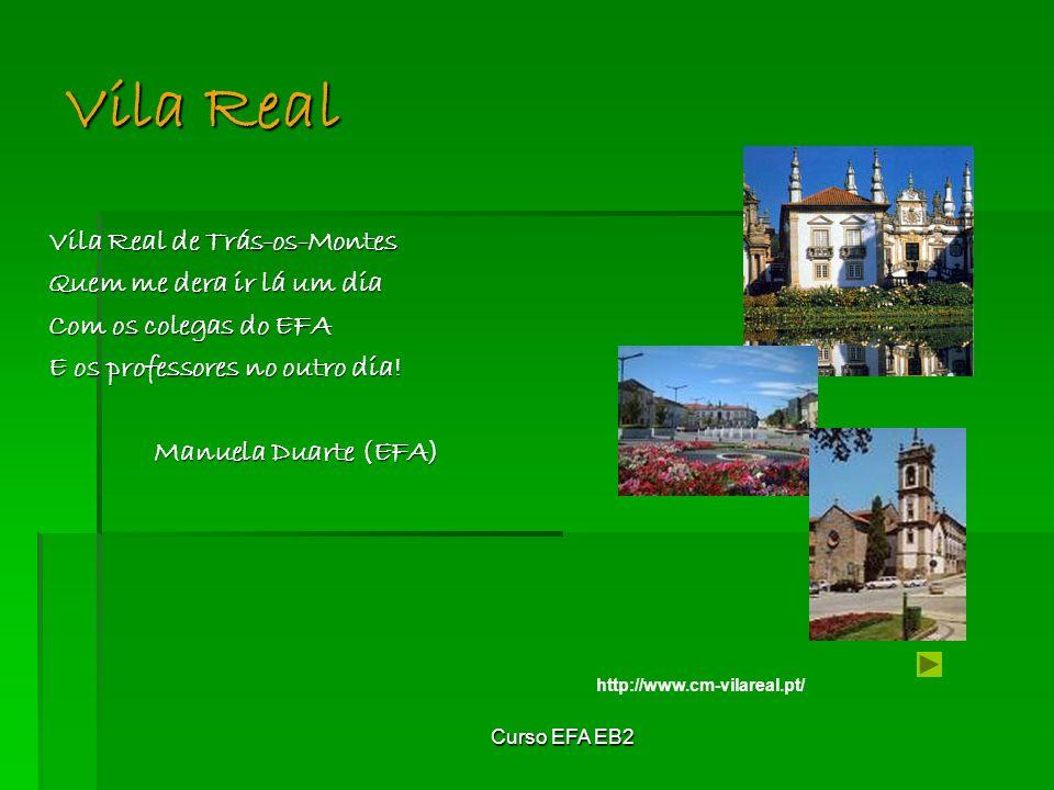 Curso EFA EB2 Vila Real de Trás-os-Montes Quem me dera ir lá um dia Com os colegas do EFA E os professores no outro dia.