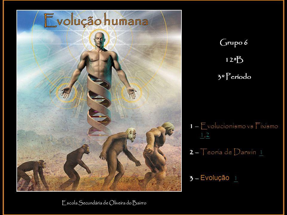 Grupo 6 12ªB 3º Período 1 – Evolucionismo vs Fixismo 1,212 2 – 2 – Teoria de Darwin 11 3 – 3 – Evolução 1 1