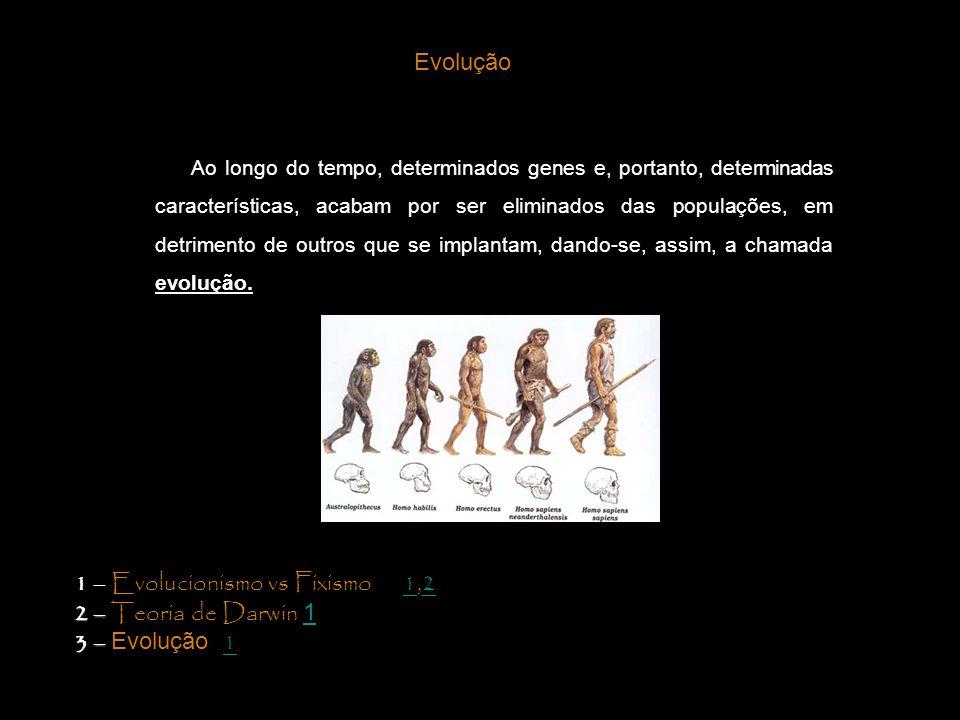 Ao longo do tempo, determinados genes e, portanto, determinadas características, acabam por ser eliminados das populações, em detrimento de outros que