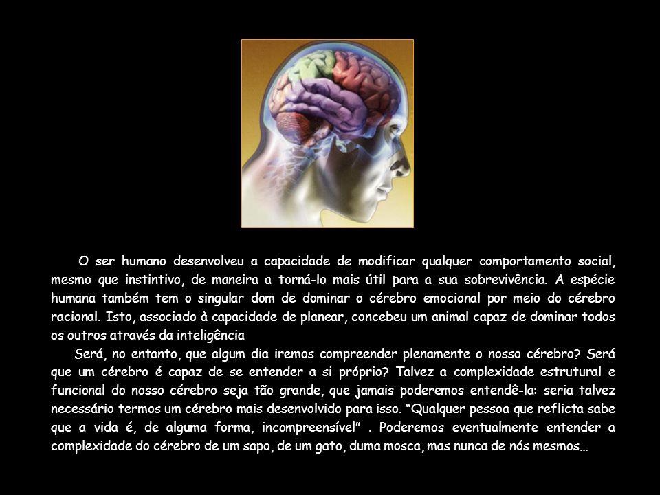 O ser humano desenvolveu a capacidade de modificar qualquer comportamento social, mesmo que instintivo, de maneira a torná-lo mais útil para a sua sob