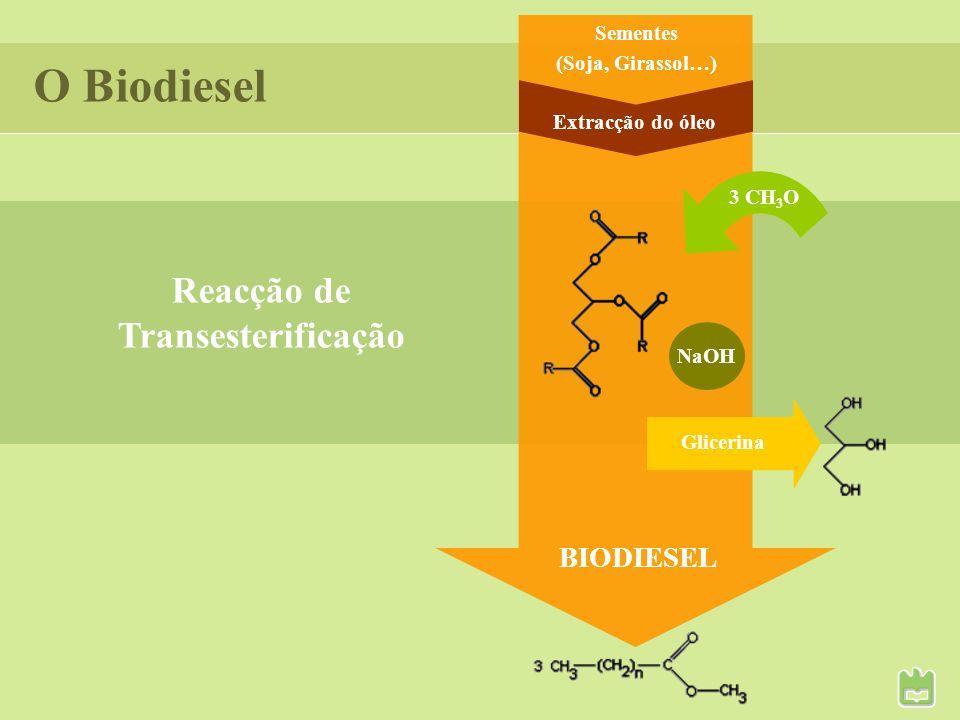 Propriedades no frio Dependem dos triglicerídeos e do álcool usados na reacção de transesterificação – compostos saturados têm T fus > à dos insaturados; Afectam a viscosidade, a volatilidade e a fluidez/escoamento do líquido; Importantes no transporte e armazenamento do Biodiesel.