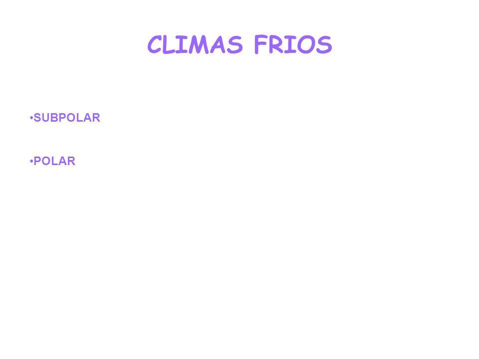 CLIMAS FRIOS SUBPOLAR POLAR