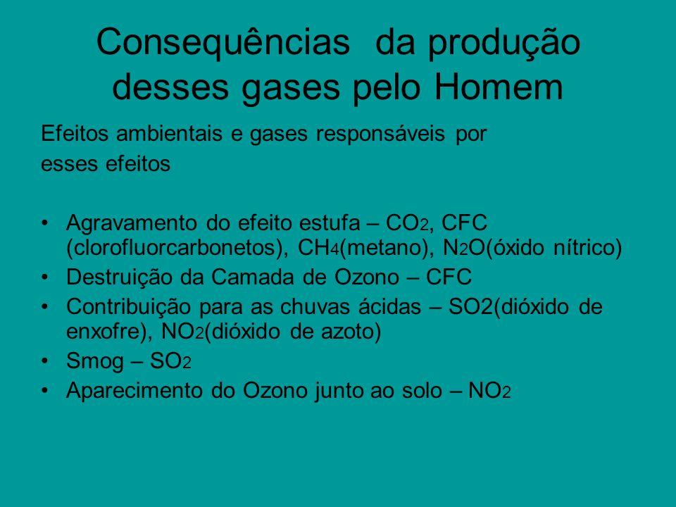 Consequências da produção desses gases pelo Homem Efeitos ambientais e gases responsáveis por esses efeitos Agravamento do efeito estufa – CO 2, CFC (