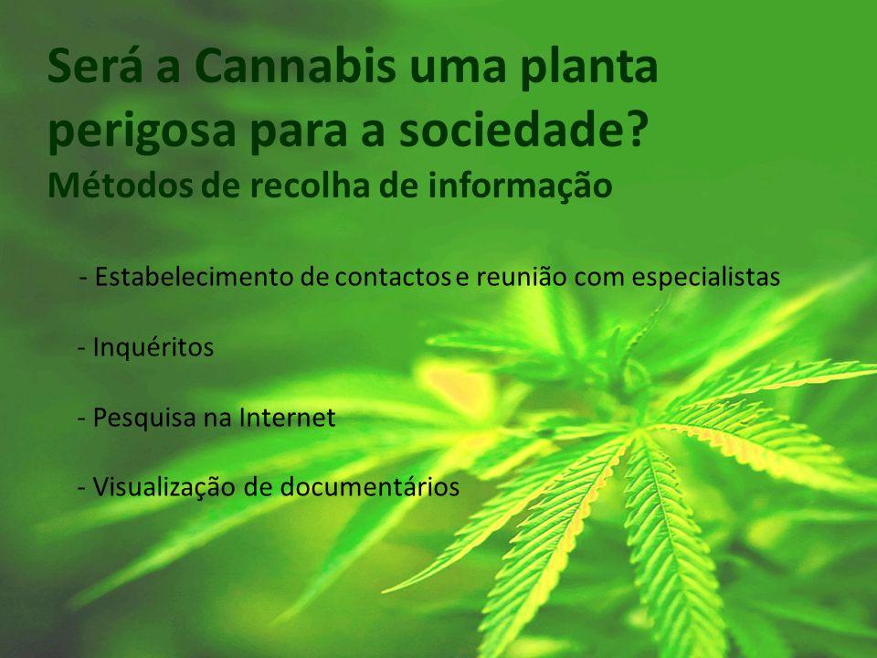 Será a Cannabis uma planta perigosa para a sociedade? Métodos de recolha de informação - Estabelecimento de contactos e reunião com especialistas - In