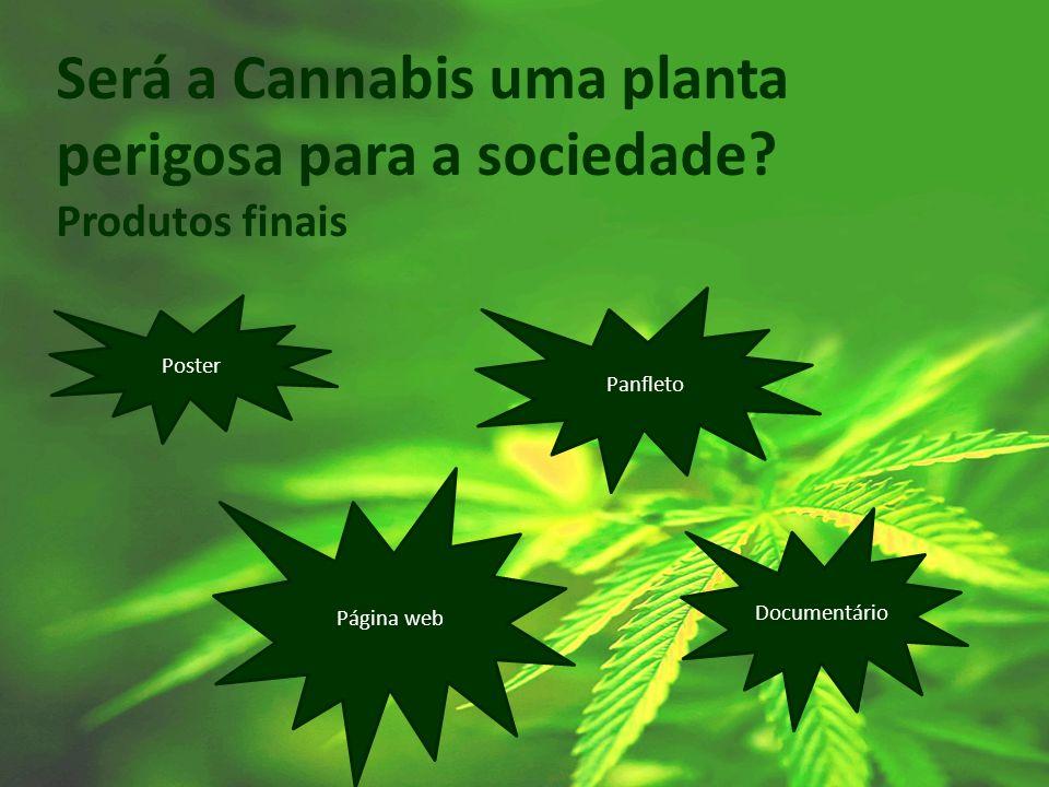 Será a Cannabis uma planta perigosa para a sociedade? Produtos finais Poster Panfleto Documentário Página web