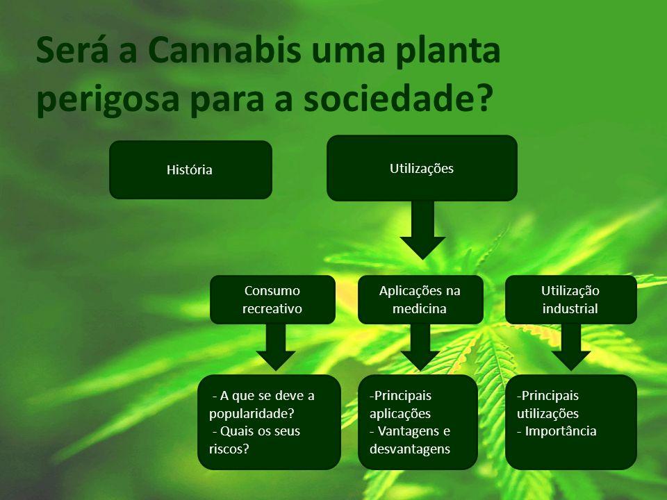 Será a Cannabis uma planta perigosa para a sociedade? História Utilizações Consumo recreativo Aplicações na medicina Utilização industrial - A que se