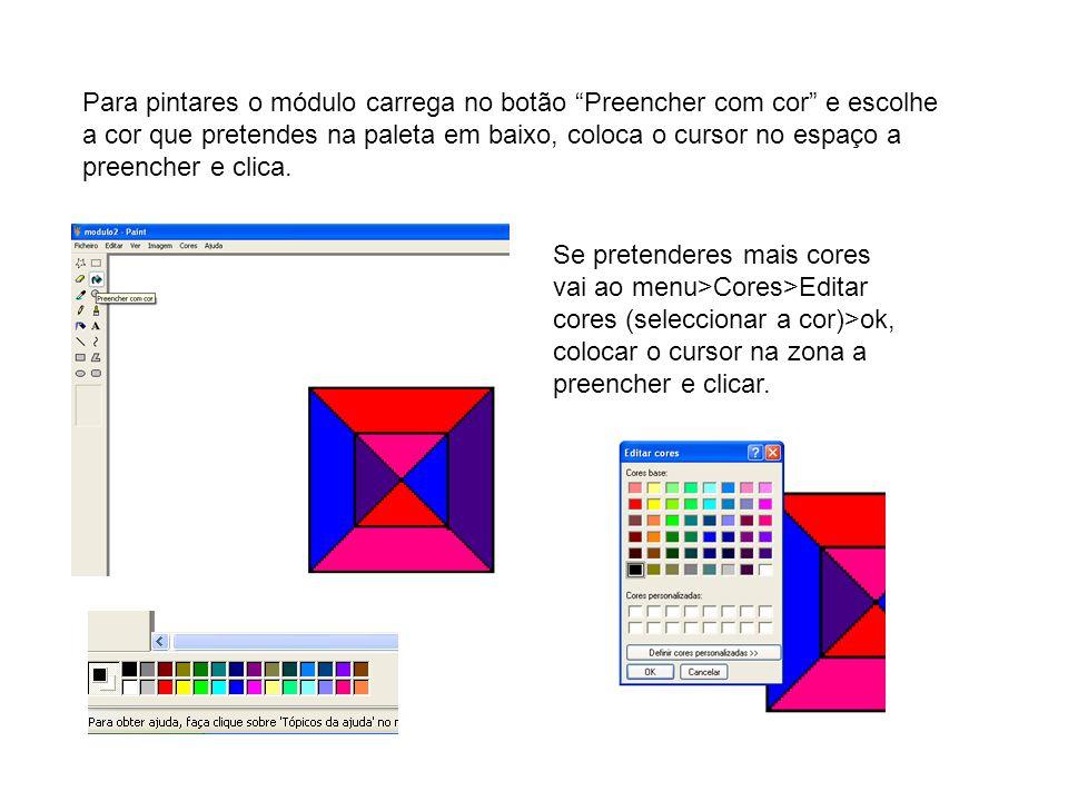 Para pintares o módulo carrega no botão Preencher com cor e escolhe a cor que pretendes na paleta em baixo, coloca o cursor no espaço a preencher e cl
