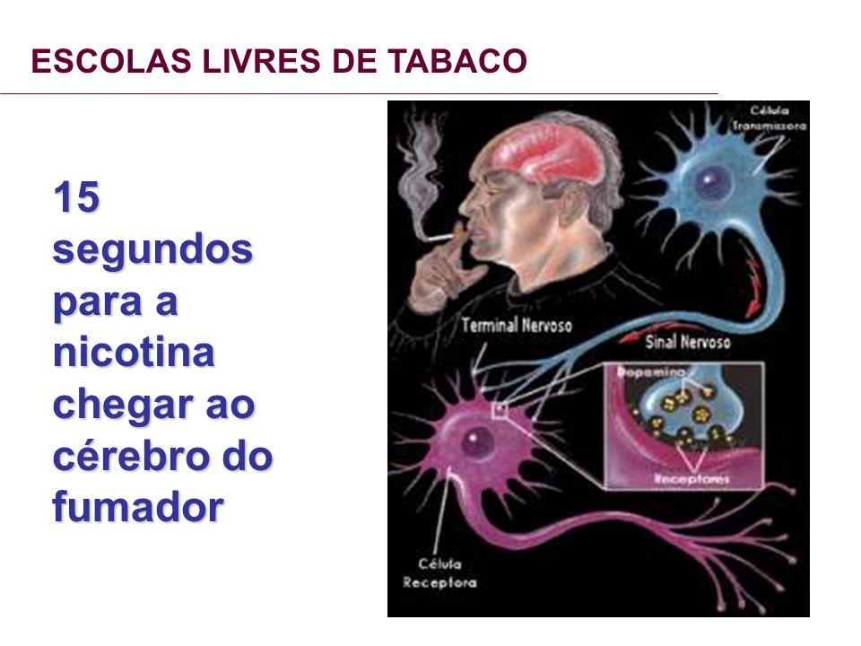 ESCOLAS LIVRES DE TABACO 15 segundos para a nicotina chegar ao cérebro do fumador