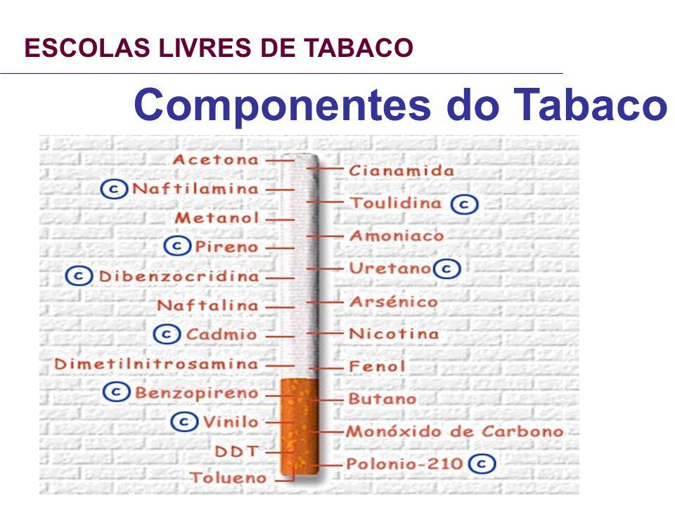 ESCOLAS LIVRES DE TABACO Componentes do Tabaco