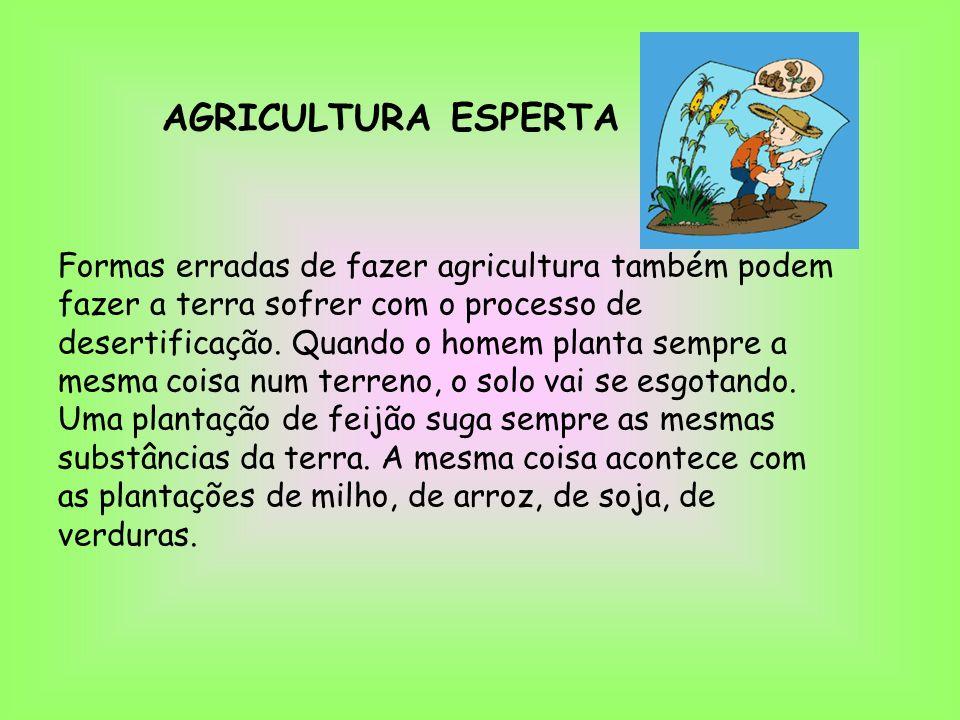 AGRICULTURA ESPERTA Formas erradas de fazer agricultura também podem fazer a terra sofrer com o processo de desertificação. Quando o homem planta semp