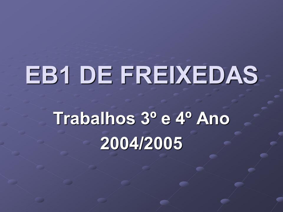 EB1 DE FREIXEDAS Trabalhos 3º e 4º Ano 2004/2005