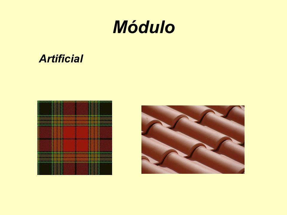 Módulo Artificial