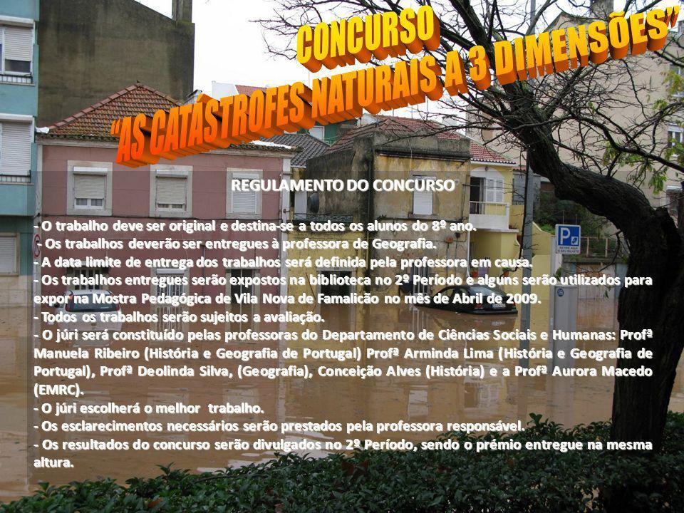 REGULAMENTO DO CONCURSO - O trabalho deve ser original e destina-se a todos os alunos do 8º ano. - Os trabalhos deverão ser entregues à professora de