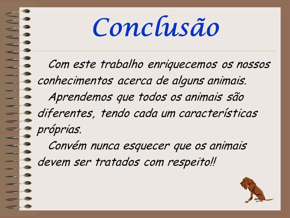 Conclusão Com este trabalho enriquecemos os nossos conhecimentos acerca de alguns animais.