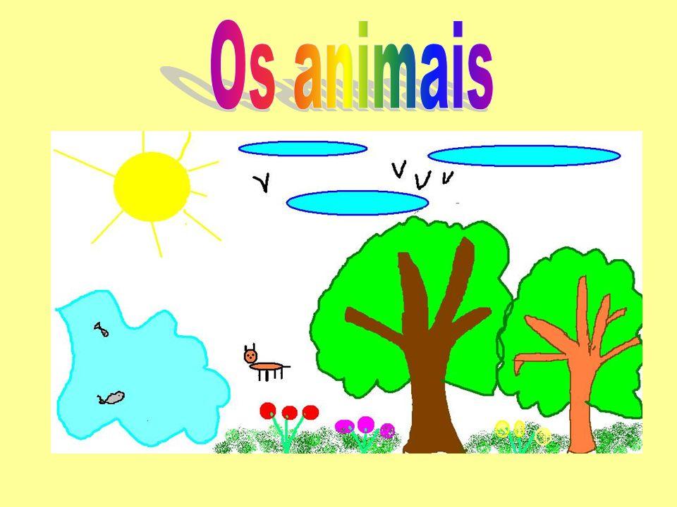 Na natureza há muitos animais diferentes.