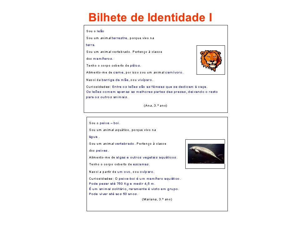 Bilhete de Identidade I