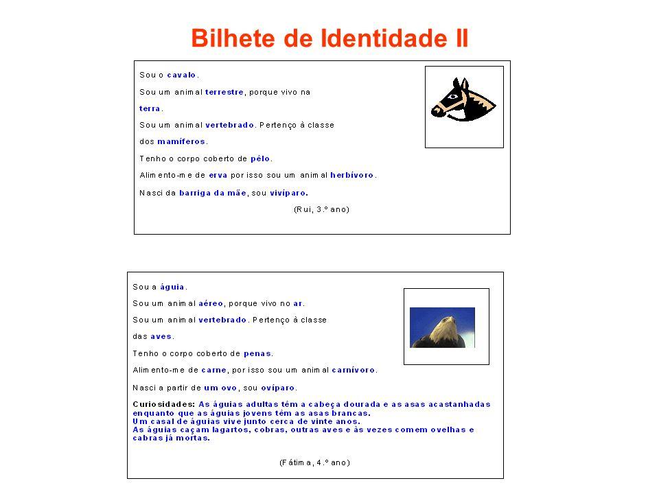 Bilhete de Identidade II