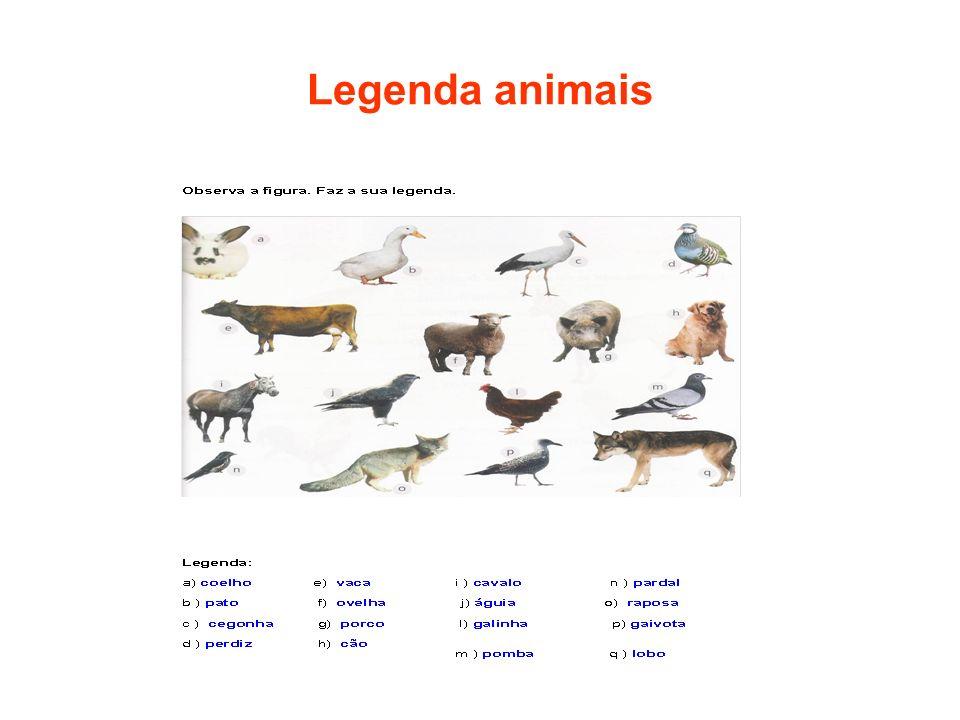 Legenda animais