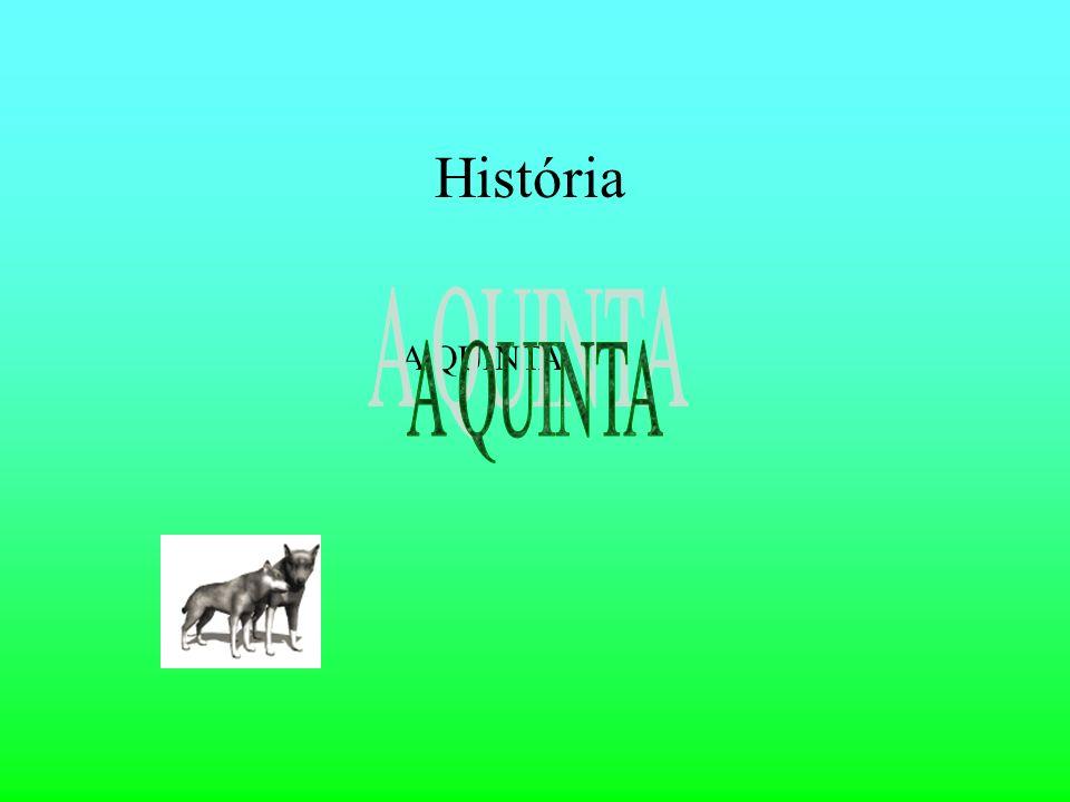 História A QUINTA
