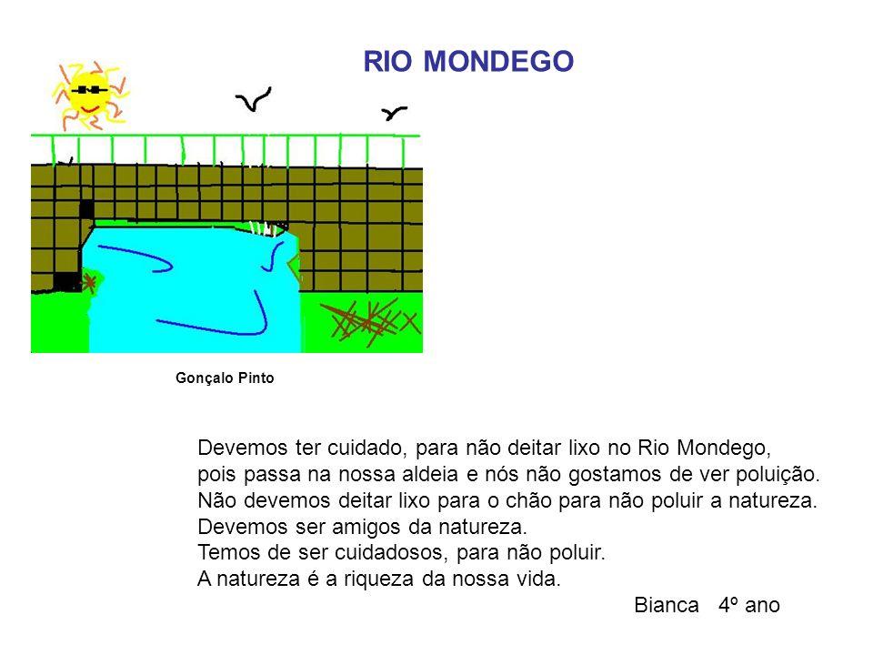 Devemos ter cuidado, para não deitar lixo no Rio Mondego, pois passa na nossa aldeia e nós não gostamos de ver poluição. Não devemos deitar lixo para